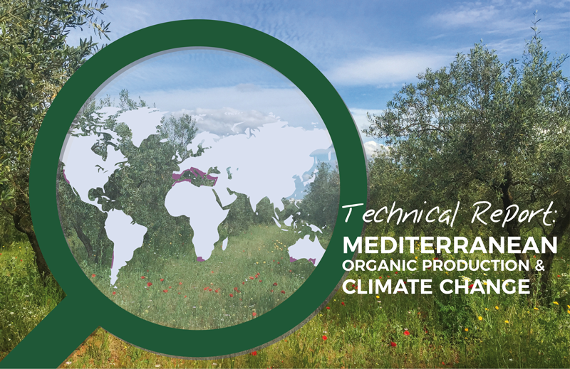 Technical Report: Mediterranean Organic Production & Climate Change
